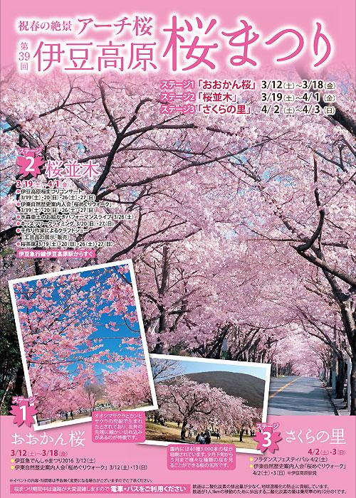 春を満喫!伊豆高原桜まつりのご案内