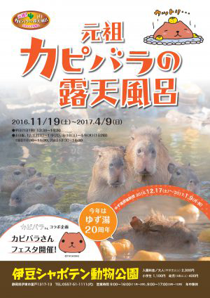 伊豆シャボテン動物公園「カピバラの露天風呂」のご案内