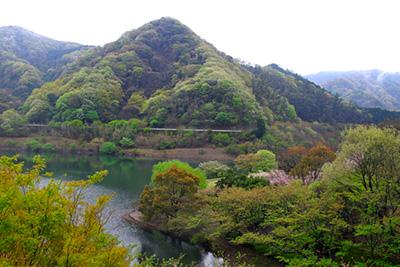 伊東の水源「奥野ダムと松川湖」